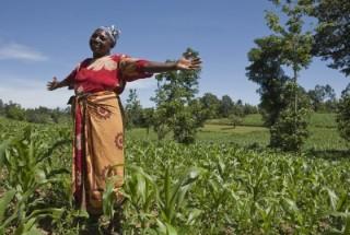 L'Africa al G20: priorità sia la sicurezza alimentare